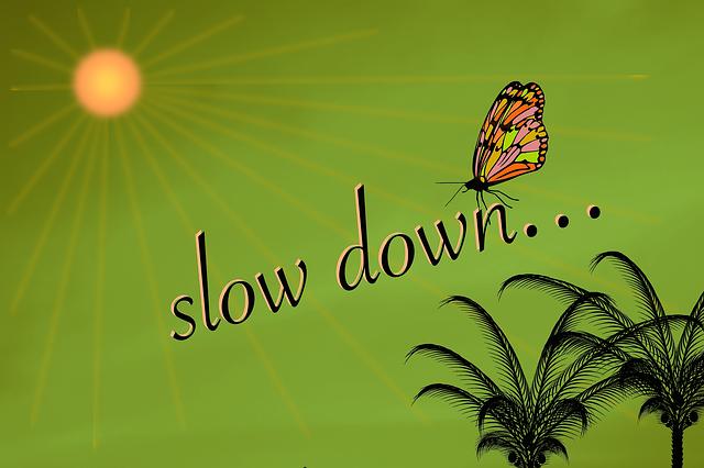 422737 / Pixabay