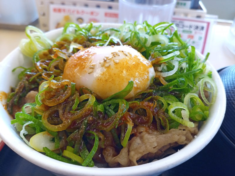 A5Pro_食事写真1